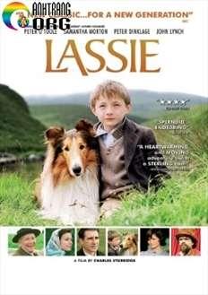Lassie Về Nhà